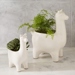 ceramic-llama-planters-d3869-z