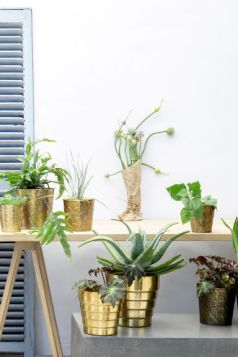 My Top 5 Interior Trends I'm Loving, H&M gold plant pots